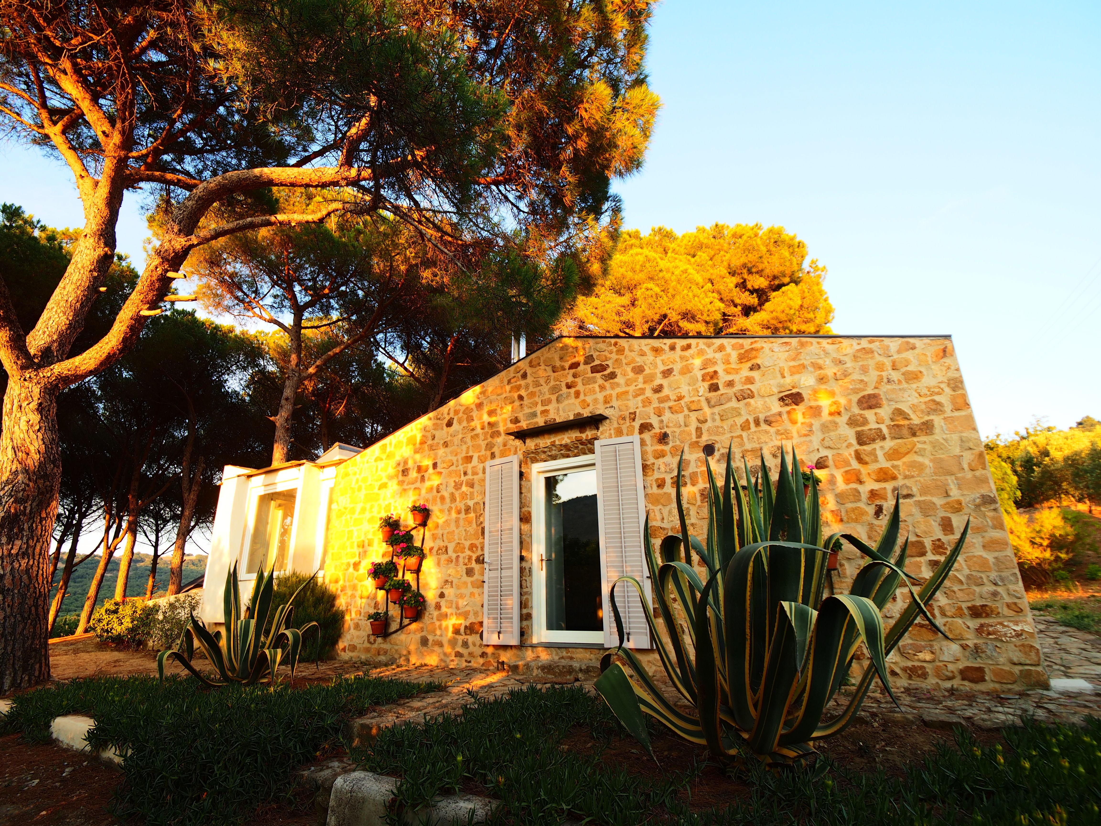 Azienda Agricola Guccione